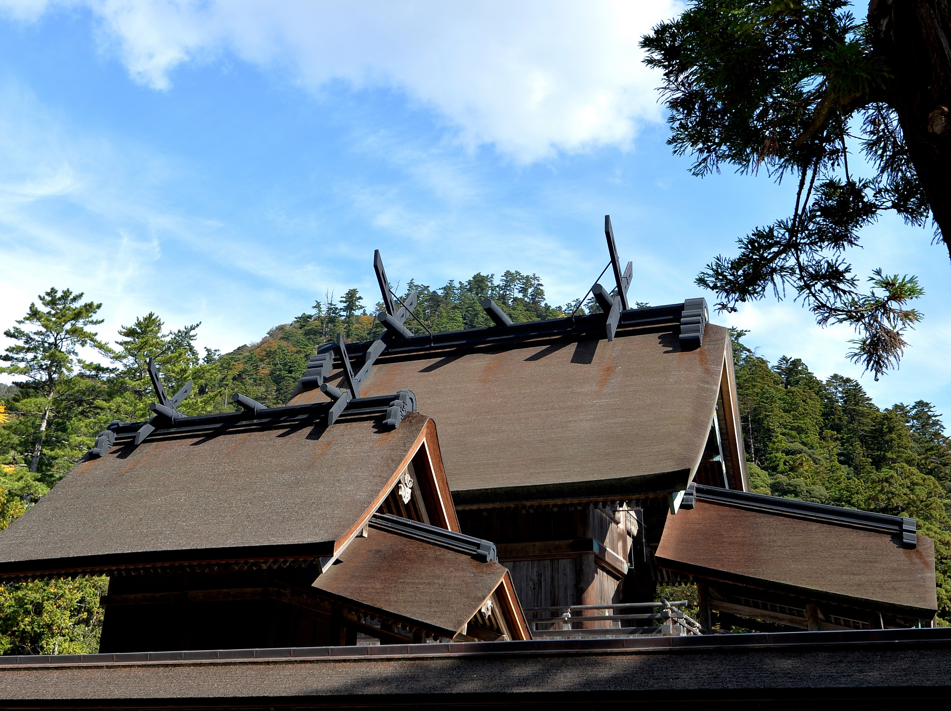 出雲大社本殿は屋根の大きな千木が印象的。写真手前の社にはタギリヒメノミコトが祀られる。