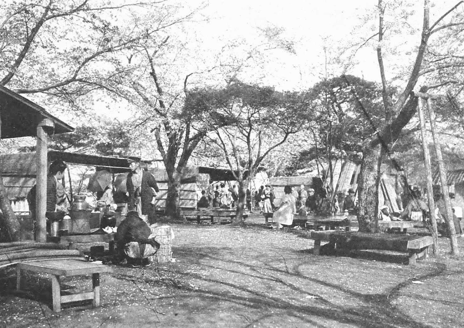 飛鳥山。渋沢栄一は1901年からここに居を構えた。(写真:国立国会図書館)