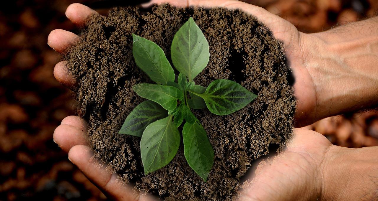 地球の未来は、我々の手の中にある。