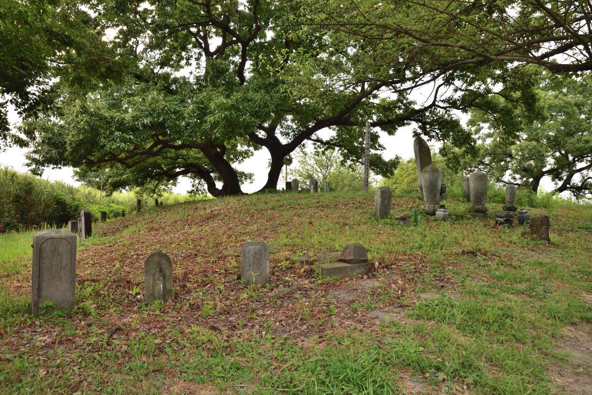 渡良瀬遊水地、旧谷中村の延命院墓地跡。